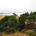 View of Yaquina Bay Jetty.- Yaquina Bay State Recreation Site