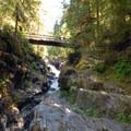 Footbridge leading to Jawbone Flats.- Opal Creek Hiking Trail