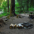 Campsite at Shady Cove Campground.- Shady Cove + Cedar Creek Campground