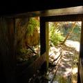 Old mine shaft just off of the Opal Creek Trail.- Opal Creek Wilderness