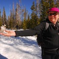 """Linda Gillard with a gray jay (Perisoreus canadensis), otherwise known as a """"camp robber.""""- Swampy Lakes, Porcupine Snowshoe Loop"""