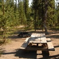 Typical campsite.- Lava Lake Campground