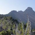 View up toward Mount Washington's summit (7,795').- Mount Washington