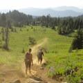 - Mount Washington