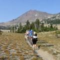 View of Broken Top (9,177') from the Soda Creek Trail.- Broken Top