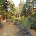 Aspen Hall Trail.- Shevlin Park
