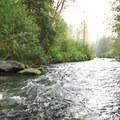 View of Tumalo Creek from Aspen Hall Trail.- Shevlin Park