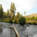 Tumalo Creek.- Shevlin Park