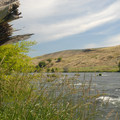 View of the Deschutes River from campground.- Deschutes River State Recreation Area Campground