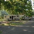 RV portion of the campground.- Deschutes River State Recreation Area Campground