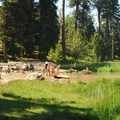 Campground's day-use and beach area.- Walton Lake Campground