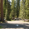 - Walton Lake Campground