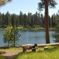 One of the campground's better sites (walk-in).- Walton Lake Campground