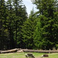 Day-use and picnic area.- Sherwood Campground