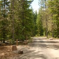 - Timothy Lake, Pine Point Campground