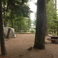 Typical campsite.- Timothy Lake, Hoodview Campground