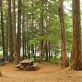 Typical campsite.- Timothy Lake, Oak Fork Campground