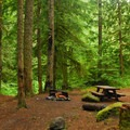 One of the campground's better campsites.- Camp Creek Campground