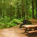 Tollgate Campground's day-use area.- Tollgate Campground
