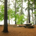 The only campsite at Meditation Point with a picnic table.- Timothy Lake, Meditation Point Campsites