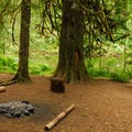 One of the trail's numerous backcountry campsites.- Salmon River, West Canyon Trail