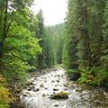Salmon River.- Salmon River, West Canyon Trail