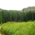 Meadow above Mirror Lake, looking up at Tom Dick and Harry Mountain (5,066').- Mirror Lake + Tom Dick and Harry Mountain