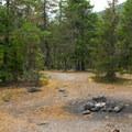 One of 10 campsites along the Sandy River.- Sandy River Campsites