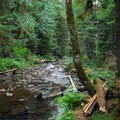 Lost Creek.- Lost Creek Campground