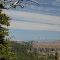 View looking north toward Mount Adams (12,281').- Gnarl Ridge Hike