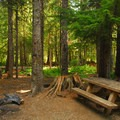Walk-in campsite on the lake's south side.- Trillium Lake Campground