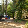 Typical campsite.- Trillium Lake Campground