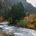Fall color on the Clackamas River.- Clackamas River, Sun Strip to Bob's Hole