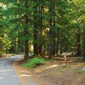 Still Creek Campground.- Still Creek Campground
