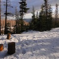 View north from the Tilly Jane A-Frame.- Tilly Jane A-Frame