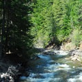 The East Fork of the Hood River.- Tamanawas Falls Hike