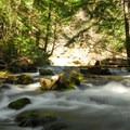 Cold Springs Creek.- Tamanawas Falls Hike
