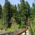 Crossing over the East Fork of the Hood River.- Tamanawas Falls Hike