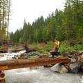 Contributor Asmund Tweto crossing Sandy River.- Ramona Falls Hike