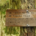 - Ramona Falls Hike