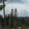 Mount Hood (11,250') from Fivemile Butte Lookout Tower.- Fivemile Butte Lookout Tower
