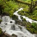 Cascade above Wahkeena Falls.- Wahkeena Falls/Multnomah Falls Loop Hike