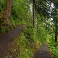 Switchback down to viewpoint of Multnomah Falls.- Wahkeena Falls/Multnomah Falls Loop Hike