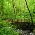 Bridge over Bridal Veil Creek.- Bridal Veil Falls, Oregon