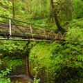 Bridge over Oneonta Creek.- Horsetail, Ponytail + Triple Falls Hike