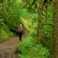 - Eagle Creek Hike to Tunnel Falls