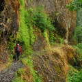 One of the many perilous portions of the trail.- Eagle Creek Hike to Tunnel Falls