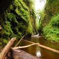 Oneonta Gorge: View on top of the log jam.- Oneonta Gorge