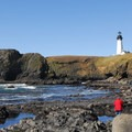 View of the tide pools and Yaquina Head Lighthouse.- Yaquina Head Outstanding Natural Area