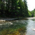 Swimming hole just south of the Tillamook Forestry Center bridge.- Wilson River + Tillamook Forestry Center